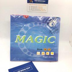 Mặt vợt Gai Magic 77